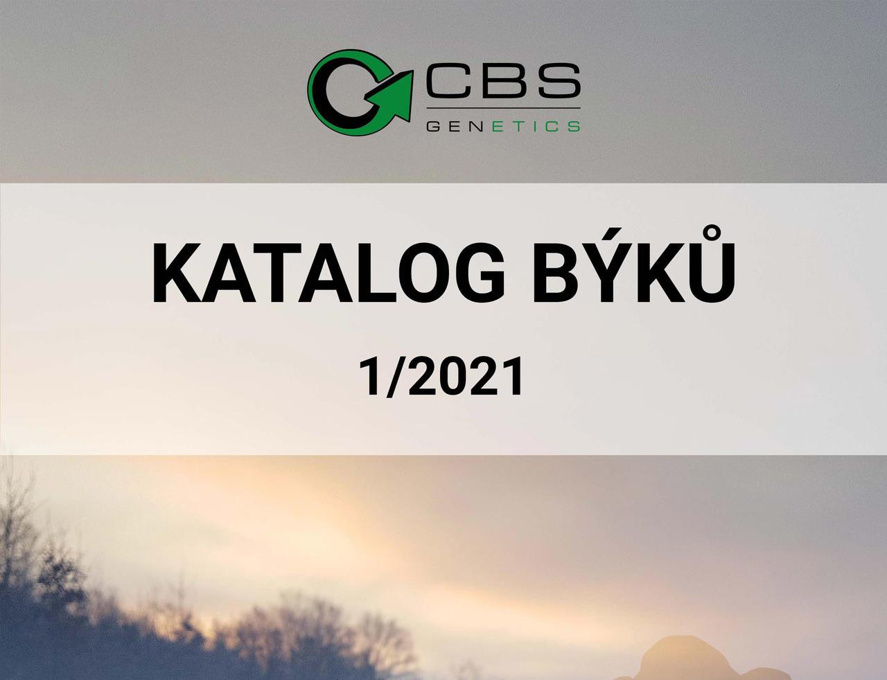 CBS katalog
