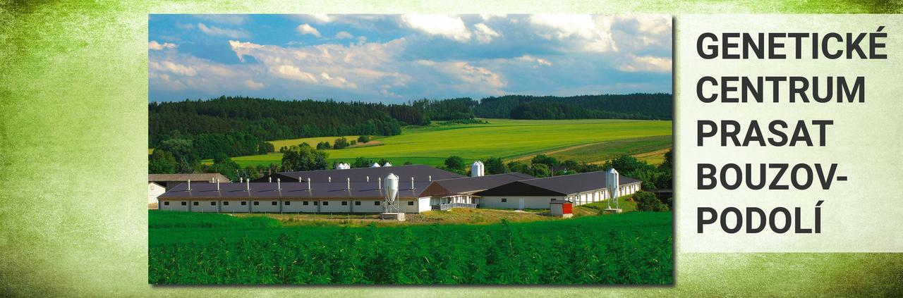 Šlechtitelský chov prasat Bouzov-Podolí